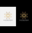 luxury gold star logo design usable for business vector image vector image
