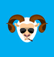 ram cool serious avatar of emotions sheep smoking vector image