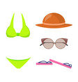swimming suit and items set vector image vector image