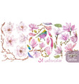 watercolor branches magnolia beautiful flowers vector image vector image