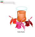 Gurhal Sharbat or Iranian Drink Made From Hibiscus vector image vector image
