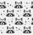 racoon vector image vector image