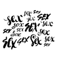 Sex Hand drawn lettering Serigraphy shirt print vector image vector image