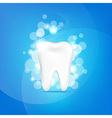 Tooth And Bokeh vector image vector image