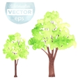 Watercolor green trees vector image