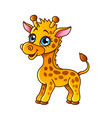 cartoon giraffe isolated vector image vector image