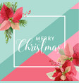 christmas winter poinsettia flower banner vector image vector image