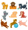 cute dogs characters vector image vector image