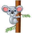 Happy koala in tree vector image