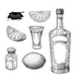tequila bottle salt shaker and shot glass with vector image