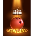 Bowling game poster vector image vector image