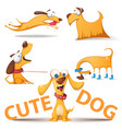 cute dog set funny vector image