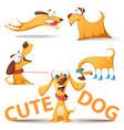 cute dog set funny vector image vector image
