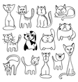 Home pets cute cats in doodle style vector image vector image
