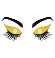 logo eyelashes eyes girl with makeup vector image vector image