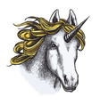 unicorn isolated sketch with head of magic animal vector image vector image