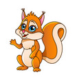 cartoon squirrel isolated vector image