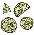 set slices of lime isolated on white background vector image