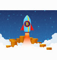 concept bitcoin growth vector image vector image