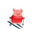 funny cartoon piglet on skis isolated on white vector image vector image