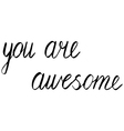 you are awesome vector image vector image