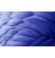 A feather vector image vector image