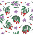 botanical seamless pattern with fresh goji red vector image vector image