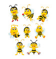collection of the yellow bee vector image