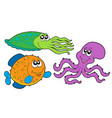 marine species collection vector image