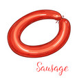 sausage delicatessen isolated icon vector image vector image