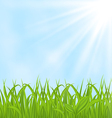 Spring background with green grass vector | Price: 1 Credit (USD $1)