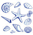 starfishes cockleshells set vector image vector image
