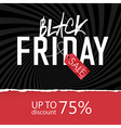Black Friday Sale poster Design template vector image vector image