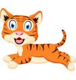 cute tiger cartoon jumping vector image