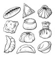 dumpling sketch healthy cooking and appetizer set vector image vector image