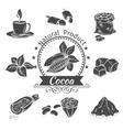 monochrome icons cocoa vector image