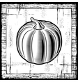 Retro pumpkin black and white vector image