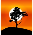 Silhouette of Tree on Sunset Background vector image vector image