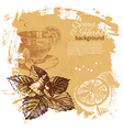 Vintage background with hand drawn sketch herbs vector image vector image