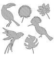 a bird in zentangl style vector image