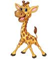 Cartoon happy giraffe isolated on white background vector image