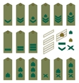 Israeli Army insignia vector image vector image