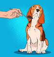 pop art beagle refuses to eat sad dog vector image