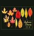 set autumn leaves vector image
