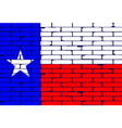 texan painted wall flag vector image vector image