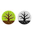 tree emblem 24 vector image vector image