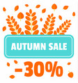autumn sale offer leaves background flat style vector image