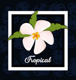 beautiful exotic tropical flower vector image vector image