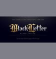 elegant blackletter gothic golden alphabet font vector image