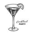 Hand drawn cocktail vector image vector image